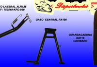 GATO  CENTRAL  Y LATERAL